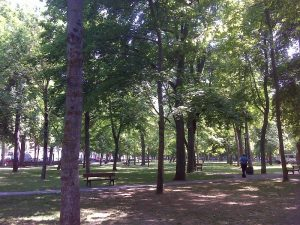 Prado park